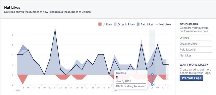 Facebook Insights Net Likes
