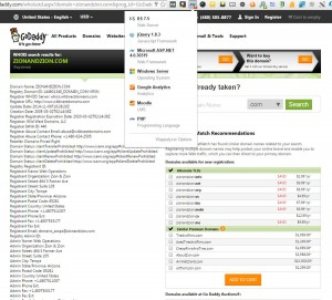 GoDaddy Whois & Wappalzyer Tools