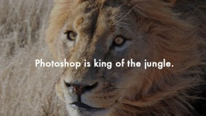 Photoshop is king of the jungle