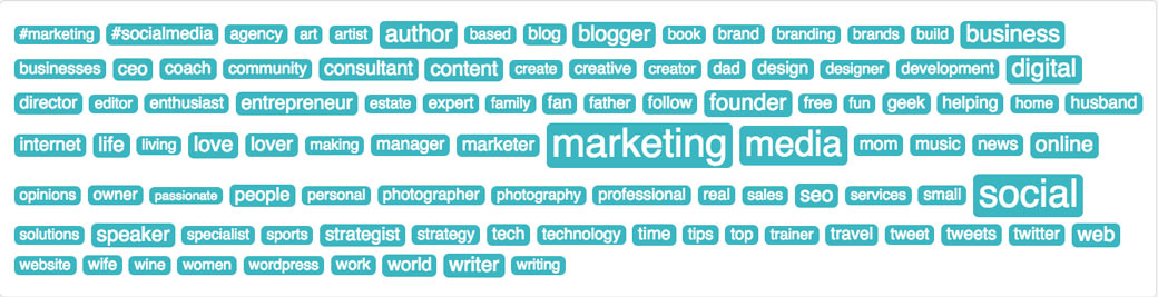 SocialBro Bio Tag Cloud Analytics