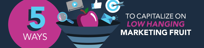 5 Ways to Capitalize on Low Hanging Marketing Fruit