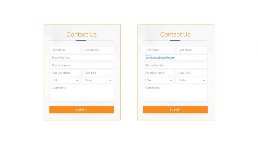 Form Example | Designing For Human Behavior